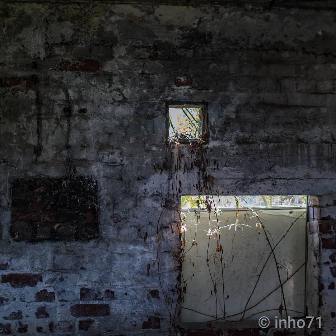 """eindringendes Licht.."" @inho71  #exploring_shotz #exploreeverything #rottenplaces #decay #vergesseneorte #urbex_rebels #jj_urbex #sombrexplore #renegade_abandoned #abandoned_addiction #abandonedafterdark #abandonedfactory #lostplace #ruine #building #darkbuilding #underland #grime_reapers #grime_nation #total_abandoned #windowshoot #architecture #darkplaces #bricks #etoe_2 #naturephotography #nature_takes_over"